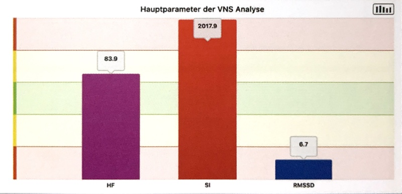 Hauptparameter-vns-Anaylse
